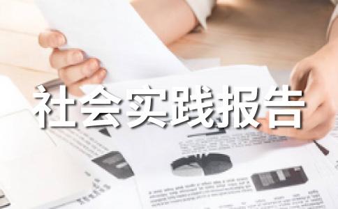 【推荐】大学生实践报告范文(精选十二篇)