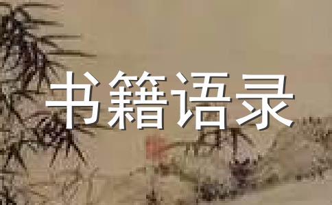 乐小米《凉生,我们可不可以不忧伤》经典语录3