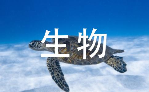 我想知道高中生物书里面的光合作用的方程式.还有有氧呼吸,无氧呼吸的方程式