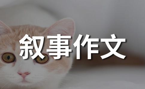 【必备】背影作文合集五篇