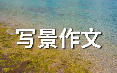 【热门】拔河比赛400字作文(精选十二篇)