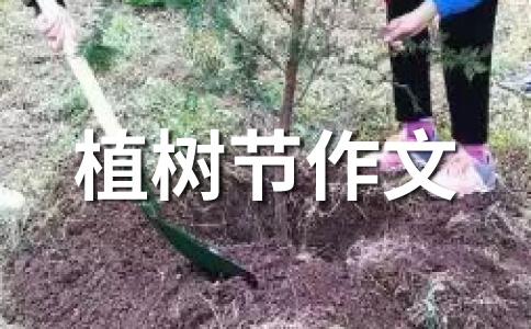 2012年植树节作文